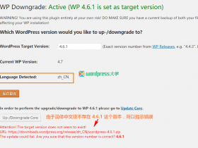使用 WP Downgrade 在线降级 WordPress 到旧版本