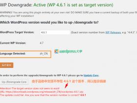 使用 WP Downgrade 在线降级 WordPress 到旧版本
