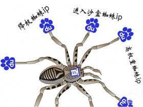 百度搜索引擎爬行蜘蛛IP大全