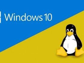 分享干货 数款 Windows DD 镜像