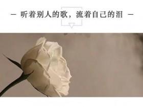 听着别人的歌,流着自己的泪... ...